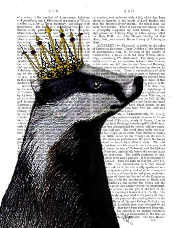 Badger King recycled paper dictionary page