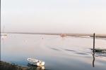 Jan 21st - Mist