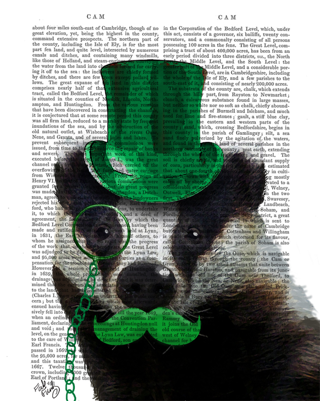 Badger with a Green Moustache