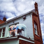 May 25th - Elephant on the roof