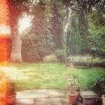 12th June - Garden