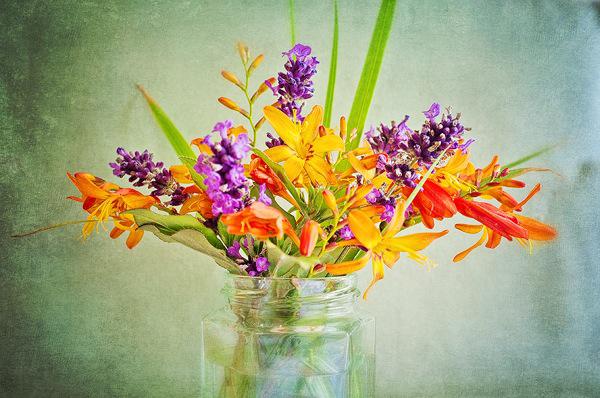 23rd July - Jam Jar Flowers