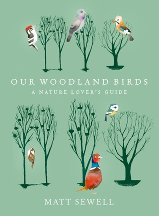 woodland bird